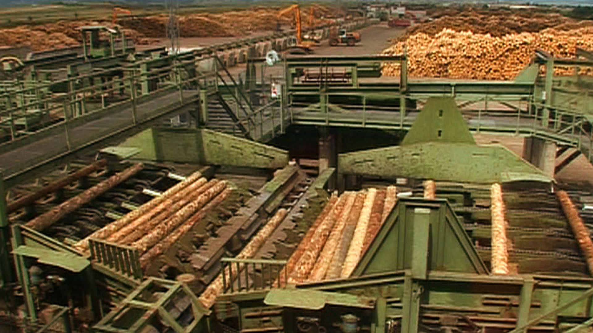 Fabrica Holzindustrie Schweighofer din Sebeș