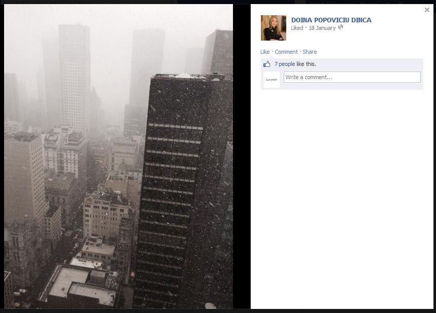 Fotografie făcută de-a lungul Fifth Avenue, în direcția Central Park. În fundal, se poate distinge Trump Tower/Sursa: Facebook, contul Doinei Popoviciu-Dincă