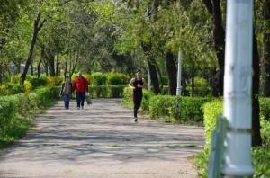 Baza de minifotbal a lui Burleanu ar fi răpit unei comunități locale din posibilitățile de recreere / FOTO: Salvați Parcul Andrei Mureșanu!