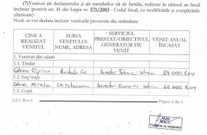 Veniturile raportate de Cirpian Ghioc în 2009, atunci când era consilierul ministrului PSD al Mediului Nicolae Nemirschi