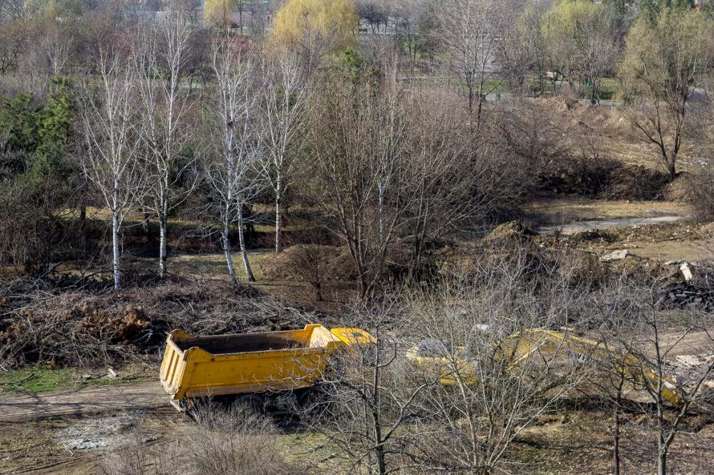 """Arbori tăiați, făcuți grămadă, pot fi văzuți acum pe șantierul """"Tineretului Park View""""."""