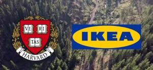 IKEA și Harvard au făcut afaceri toxice în România
